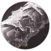 struktura włosów niskoporowatych